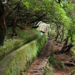 Madeira – Wandern entlang der alten Wasserwege